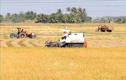 Ban hành Kế hoạch cơ cấu lại ngành nông nghiệp giai đoạn 2021 - 2025