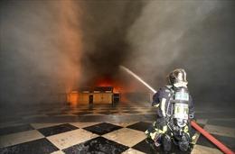 Sốc, buồn nhưng không hoảng sợ: Cuộc đua nước rút cứu Nhà thờ Đức Bà Paris