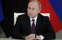 Thu nhập của Tổng thống Putin giảm hơn 1/2 trong năm 2018