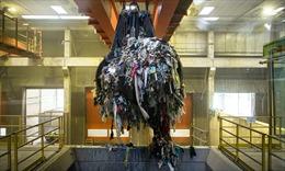 Từ không tái chế đến không rác thải: Học cách xử lý rác của Slovenia