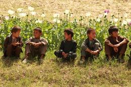 KidRights: Anh và New Zealand tụt hạng sau Syria, Triều Tiên về quyền trẻ em
