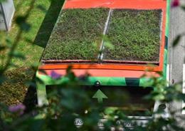 Singapore trồng cây xanh trên nóc xe buýt