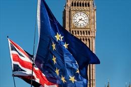 Công dân EU dùng iPhone vẫn chờ đợi ứng dụng về Brexit