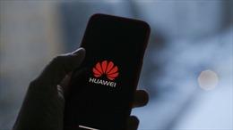 Huawei sẽ ra mắt điện thoại dùng hệ điều hành riêng trong năm nay
