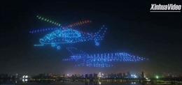 Mãn nhãn với màn tạo hình trên không của 800 thiết bị bay không người lái