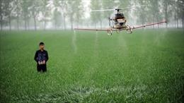 Châu Á cần đầu tư 800 tỷ USD để giải quyết khủng hoảng lương thực