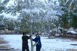Thời tiết cực đoan, thủ đô Baghdad của Iraq đón tuyết rơi hiếm có