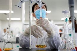 Vaccine COVID-19 của Sinovac/Trung Quốc tạo phản ứng miễn dịch nhanh chóng