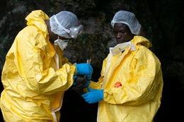 Theo dấu chân 'thợ săn virus' giữa rừng rậm châu Phi
