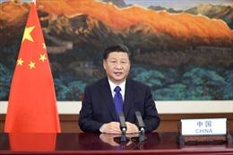 Chủ tịch Trung Quốc chủ trì hội nghị thượng đỉnh với các nhà lãnh đạo Trung và Đông Âu