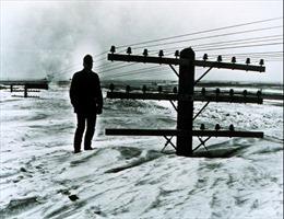 Nhìn lại những trận tuyết rơi tồi tệ nhất lịch sử thế giới