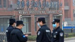 WHO sẽ điều tra về người đầu tiên mắc COVID-19, chợ hải sản tại Vũ Hán