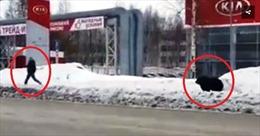 Video người đàn ông bị gấu đuổi 'bán sống bán chết' ngay giữa phố