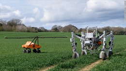 Không dùng chất độc hại, robot 'nông dân' phóng điện diệt cây dại