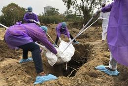 Bệnh sốt bí ẩn làm 68 ngườiở Ấn Độ tử vongtrong 1 tuần