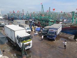 Chồng chéo trong quy hoạch cảng tại Quy Nhơn - Bài 1: Tàu thuyền neo đậu khó khăn