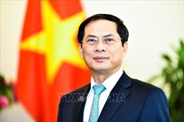Tân Bộ trưởng Bộ Ngoại giao Bùi Thanh Sơn đưa ra bốn ưu tiên ngoại giao trong nhiệm kỳ tới