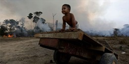 Ngày càng nhiều trẻ em Brazil mắc bệnh hô hấp vì cháy rừng Amazon