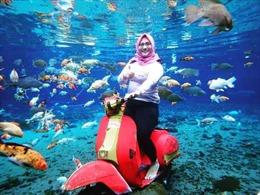 Tới Indonesia 'sống ảo' dưới đáy hồ trong suốt như pha lê