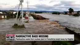 Rác thải nhiễm xạ ở Nhật bị bão cuốn trôi