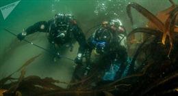 Na Uy tìm thấy xác tàu còn nguyên vẹn sau hơn 250 năm dưới đáy biển