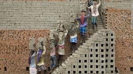 Sinh viên Ấn Độ chế tạo gạch từ rác thải nhựa