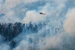 Hàng nghìn người sơ tán do cháy rừng ở Australia