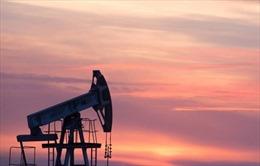 Sản lượng dầu của Nga năm 2019 đạt cao kỷ lục thời hậu Xô Viết