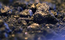Than đá trở thành nhiên liệu hóa thạch đắt đỏ nhất thế giới