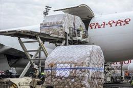 Các công ty Trung Quốc trên mặt trận 'ngoại giao khẩu trang' ở Châu Phi