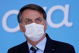 Thẩm phán Brazil: Tổng thống Bolsonaro sẽ bị phạt tiền nếu không đeo khẩu trang