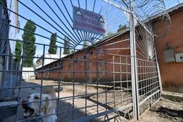 Ukraine bán đấu giá hàng trăm nhà tù cũ