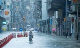 Hố tử thần 'nuốt chửng' 21 xe ô tô tại Trung Quốc