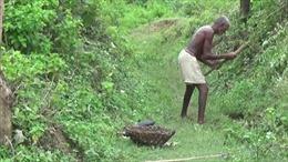 Người đàn ông Ấn Độ dành 30 năm đào kênh dẫn nước về làng