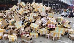 5.000 vật nuôi được phát hiện chết trong các thùng vận chuyển tại Trung Quốc