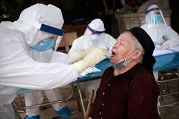 Australia đề cao công tác chống dịch COVID-19 của Việt Nam