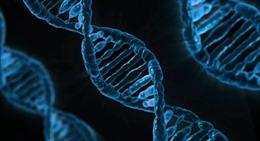 Tiêu diệt tế bào ung thư bằng công cụ chỉnh sửa gien