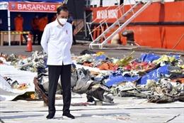 Tình tiết mới vụ rơi máy bay Indonesia: Nghi vấn van tiết lưu tự động bị lỗi