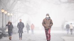 Một số bang và thành phố của Mỹ ban bố tình trạng khẩn cấp do bão tuyết