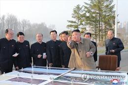 Chủ tịch Kim Jong-un làm gì vào lúc Triều Tiên phóng tên lửa mới?