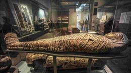 Tham quan bảo tàng xác ướp Hoàng gia Ai Cập