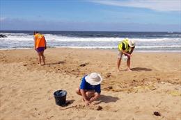 Đãi cát tìm hạt vi nhựa ở Australia