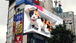 Mèo 3D khổng lồ cử động như thật trên biển quảng cáo lớn nhất Tokyo