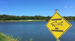 Kinh hãi sân golf nằm sát đầm cá mập hung hãn tại Australia