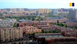 Trung Quốc chuẩn bị xây 1.000 công viên lớn để phủ xanh 'rừng bê tông'