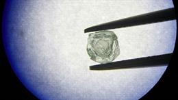 Nhặt được viên kim cương vàng quý giá khi đi dạo công viên ở Mỹ