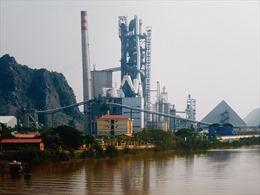 Xi măng Vicem Hải Phòng phát huy vị thế mới trên con đường hội nhập