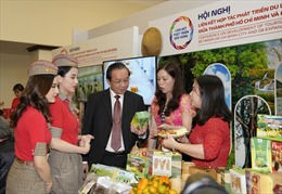Vietjet cùng TP Hồ Chí Minh liên kết phát triển các vùng du lịch nổi bật khắp Việt Nam
