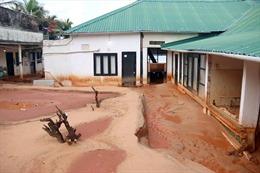 Khẩn trương khắc phục sự cố cát tràn tại phường Mũi Né