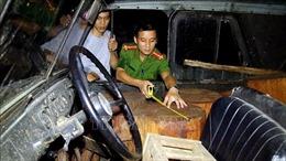 Chống khai thác gỗ bất hợp pháp và thúc đẩy thương mại gỗ hợp pháp